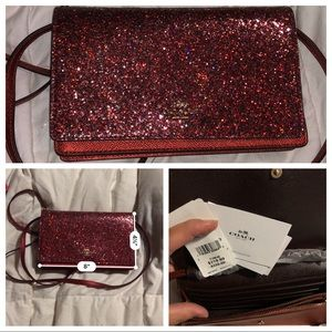 Coach glitter collection